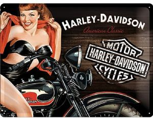 Harley Davidson Biker Babe large embossed metal sign 400mm x 300mm (na)